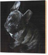 Magoo IIi Wood Print