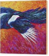 Magpie In Flight Wood Print