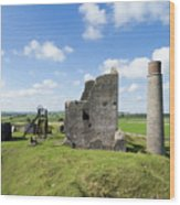 Magpie Mine 1 Wood Print