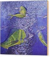 Mahi Mahi Original Oil Painting 24x30in Wood Print by Manuel Lopez