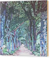 Mahogany Avenue Wood Print