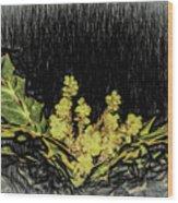 Mahonia Blossom Wood Print