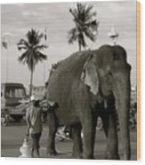 Mahout And Elephant Wood Print