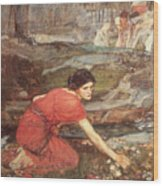 Maidens Picking Flowers By The Stream Wood Print