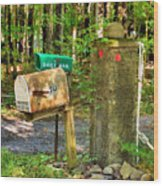 Mailbox On The Rural Country Road Wood Print