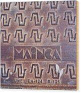 Mainca Landscape Wood Print