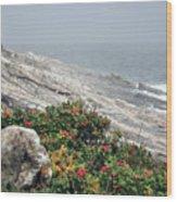 maine 13 Pemaquid Lighthouse Shoreline Before Storm Wood Print