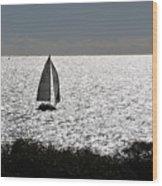 maine 44 Sailboat Wood Print