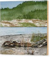 Maine Beach Wood Wood Print