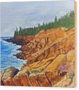 Maine Coast Acadia National Park Wood Print