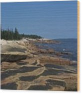 Maine Coast Wood Print