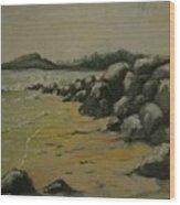 Maine Coast Usa Wood Print
