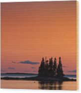 Maine Coastal Island Wood Print