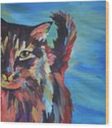 Maine Coon Wood Print