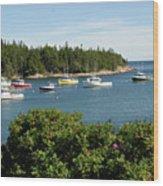 Maine Cove Wood Print