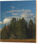 Maine Landscape Photography Wood Print