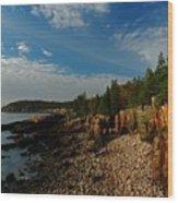 Maine Rocky Coast Wood Print