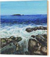 Maine Tidal Pool Wood Print