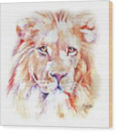 Majestic African Lion Wood Print