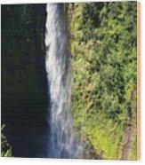 Majestic Akaka Falls Wood Print