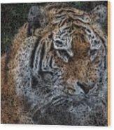 Majestic Bengal Tiger Wood Print