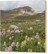 Majestic Colorado Alpine Meadow Wood Print