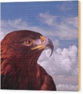 Majestic Golden Eagle Wood Print