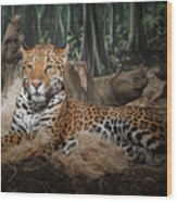 Majestic Leopard Wood Print