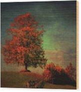 Majestic Linden Berry Tree Wood Print