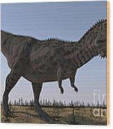 Majungasaurus In A Barren Environment Wood Print