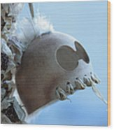 Makakii Ikaika Makani Wood Print