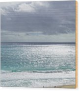 Makapuu Beach Oahu Hawaii Wood Print