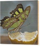 Malachite Wood Print