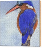 Malachite Kingfisher Wood Print