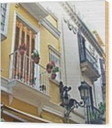 Malaga-2010-20 Wood Print