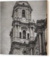 Malaga Cathedral Wood Print
