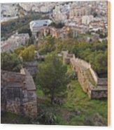 Malaga Fortifications Wood Print