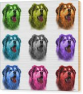 Malamute Dog Art - 6536 - Wb - M Wood Print