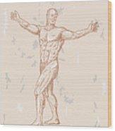 Male Human Anatomy Wood Print