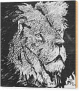 Male Lion Portrait Wood Print