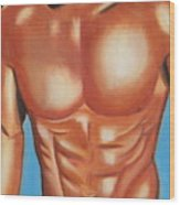 Male Nude Wood Print