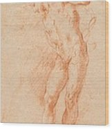 Male Nude [verso] Wood Print