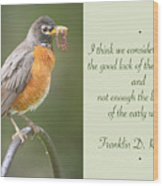 Male Robin With Worms In Bill Animal Behavior Wood Print