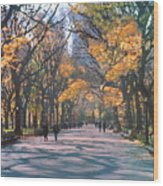 Mall Central Park New York City Wood Print by George Zucconi