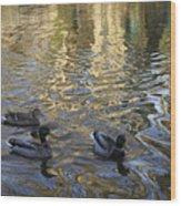 Mallard Ducks On The Canal #1107 Wood Print