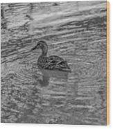 Mallard #e9 Wood Print