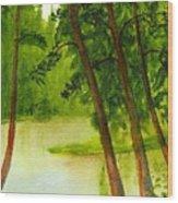 Mallard Lake Bc Wood Print
