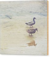 Mallards At The Chattahoochee River Wood Print