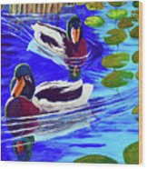 Mallards In The Pads Wood Print