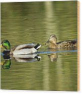 Mallards On The Lake Wood Print